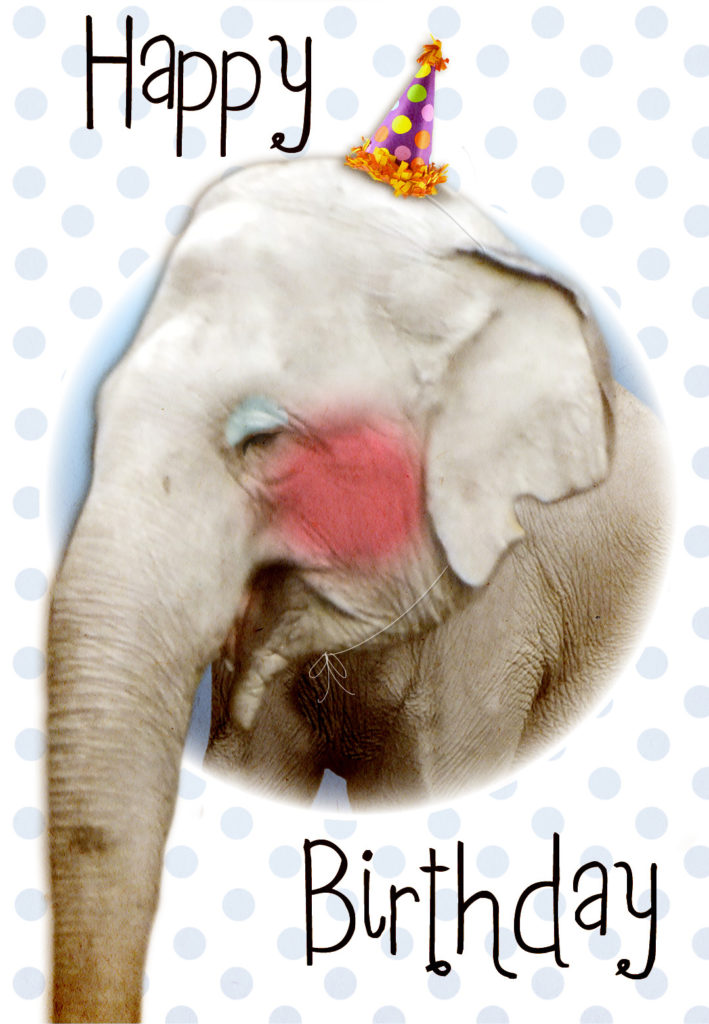 Cute Elephant Free Birthday Card Greetings Island
