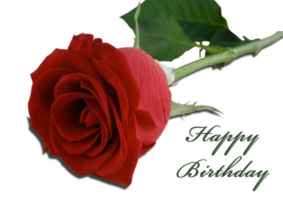 Free Printable Roses Birthday Cards