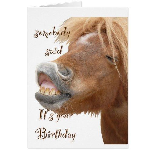 Funny Horse Birthday Card Zazzle