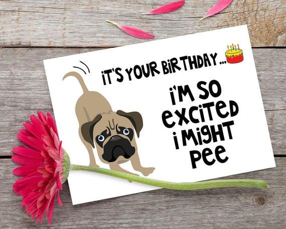 Funny Printable Birthday Card Funny Dog Birthday Card