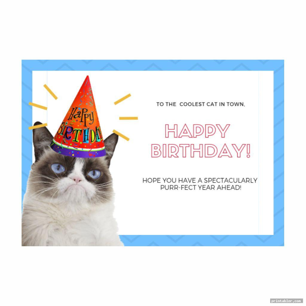 Grumpy Cat Birthday Card Printable Printabler