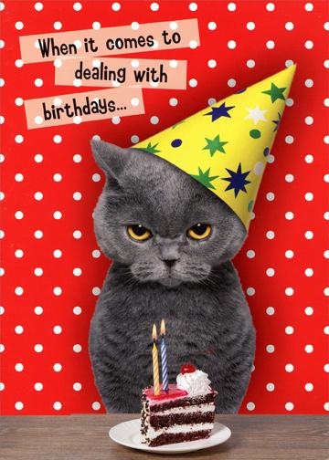 Oatmeal Studios Dealing With Birthdays Cat Funny Birthday
