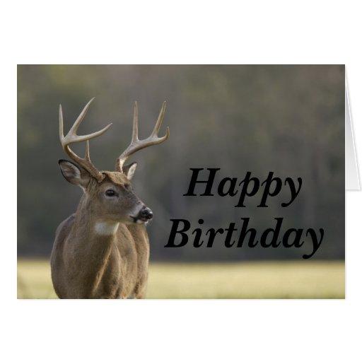 Smoky Mountain Buck Animal Hunting Happy Birthday Greeting